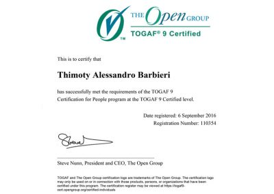 TOGAF 9.1 – Certified Enterprise Architect